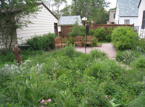 st francis backyard bird sanctuary garden in minnesota