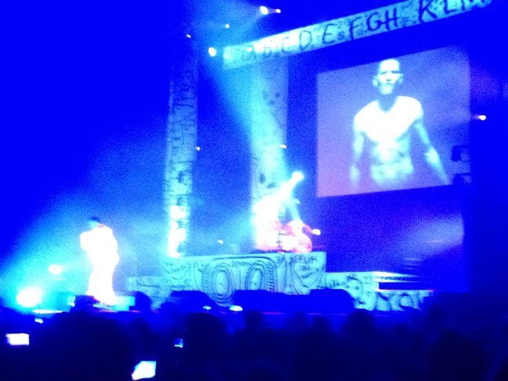 Die Antwoord, 29/01/2015 Heineken Music Hall, Amsterdam