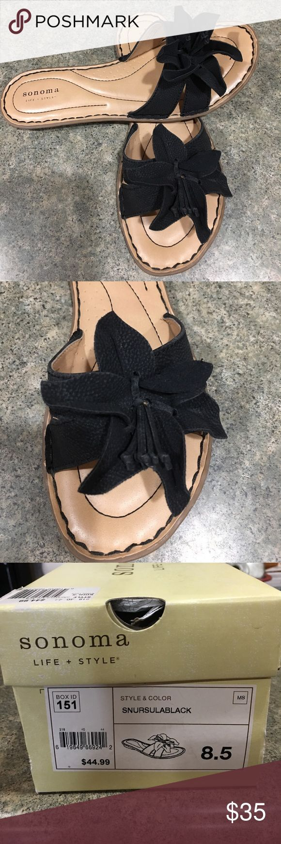 Sonoma black flower ladies sandals Cute ladies black sandal with cute flower. Brand new with box and wrapping. Never worn. They are so cute with jeans, capris, and summer dresses. Sonoma Shoes Sandals