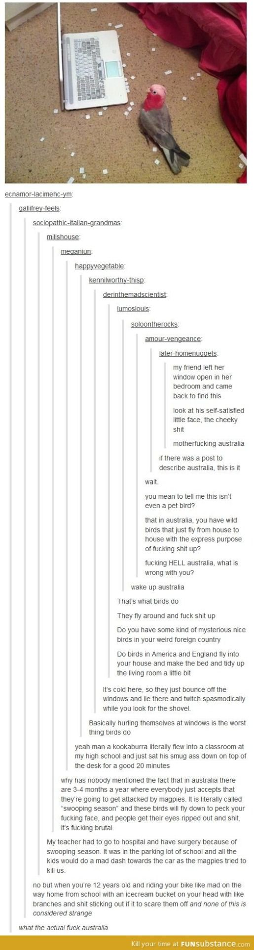Holy crap, Australia! i think you all know why i am posting this on here.....