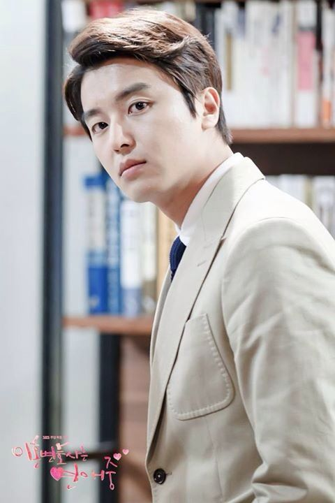Divorve lawyer in love - yeon woo jin