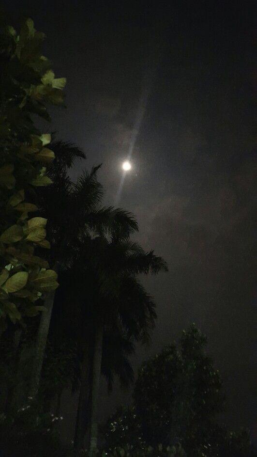 Sharing the Moon...