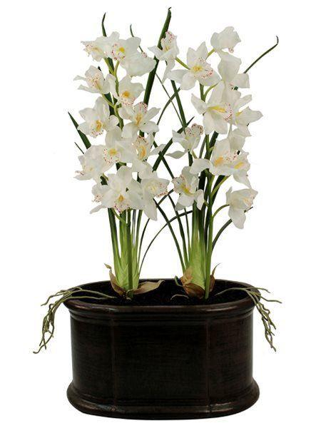Large White Cymbidium Orchids  (Silk)