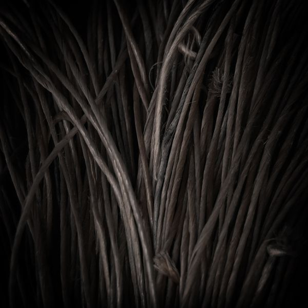 Murk by Jürgen Heckel, via Behance: Jürgen Heckel, Inspiration, Natural Photography, Brutality Natural, Photo Colors, Jrgen Heckel, Nature Photography, Photo Galleries, Behance Network