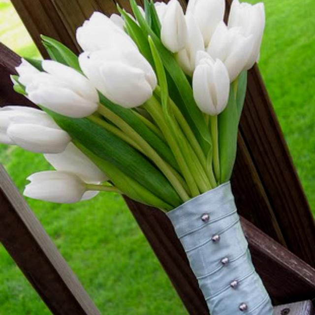 TulipsBridal Bouquets, Tulip Wedding Bouquets, Wedding Flower White Tulip, Spring Wedding, White Tulips, White Bouquets, Bridesmaid Bouquets, Yellow Flower, White Tulip Bouquets