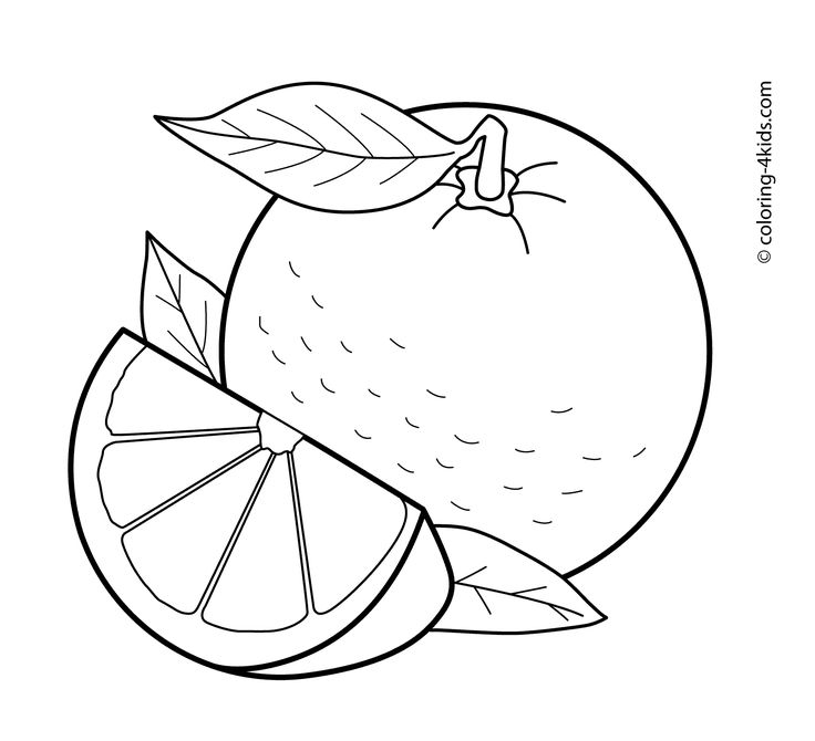 Orange fruits coloring pages for kids, printable free