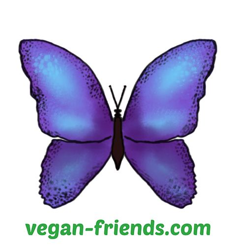 Vegan Friends aims to create a friendly open community, where we can express ourselves exactly how we would have done among our friends. So please feel free to be as you are!