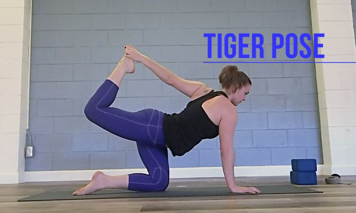 Our #yoga pose of the week is Tiger pose or Vyaghrasana!  Get the how-to, benefits, and variations right here ❤