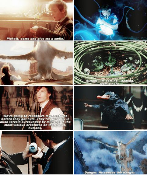 Newt Scamander - More comfortable with creatures than his fellow witches and wizards…