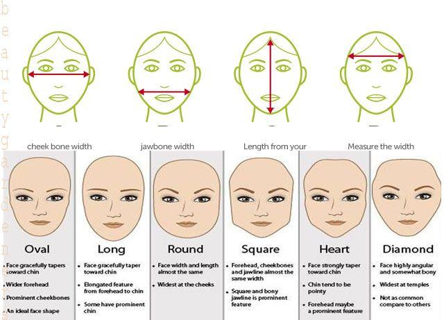 Face Shap Face Measureface Style Face Shape