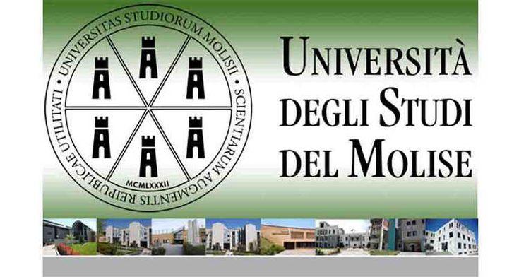 Università degli Studi del Molise bando assegnazione 25 borse di mobilità programma Erasmus per studenti iscritti a.a. 2016/2017 a corso di laurea o Master.