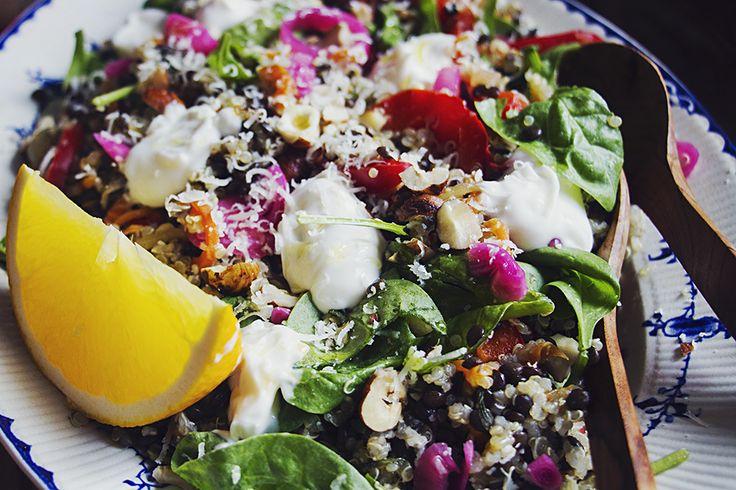 Sallad med quinoa, belugalinser, hasselnötter och apelsin