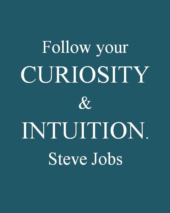 Curiosity & Intuition... I have those...