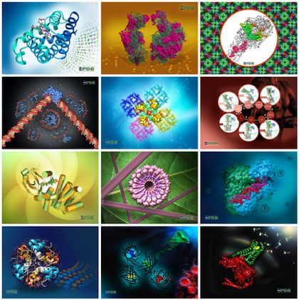 Worldwide Protein Data Bank commemorates 2014 - the International Year of Crystallography - with 12 calendar images!