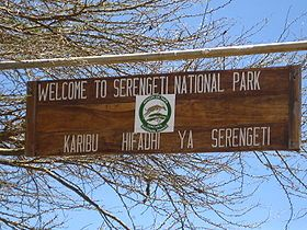 Image illustrative de larticle Parc national du Serengeti