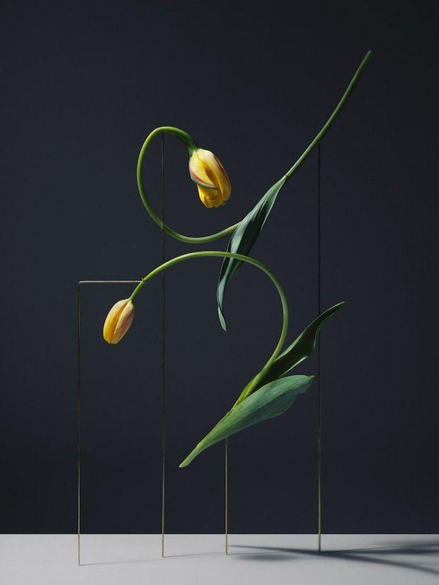 Postures par Carl Kleiner - Carl Kleiner est un artiste photographe qui excelle dans la composition et la mise en scène de ses sujets.