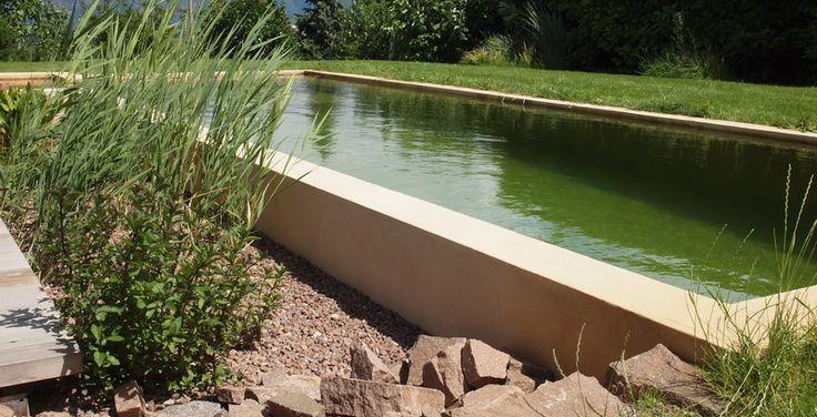 157 best schwimmteiche piscine biologiche natural for Laghetto balneabile progetto