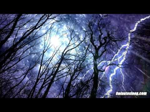 Forest Rain & Thunderstorm Sounds 10 Hours | Sleep or Study to Rain Falling White Noise Ambiance - YouTube