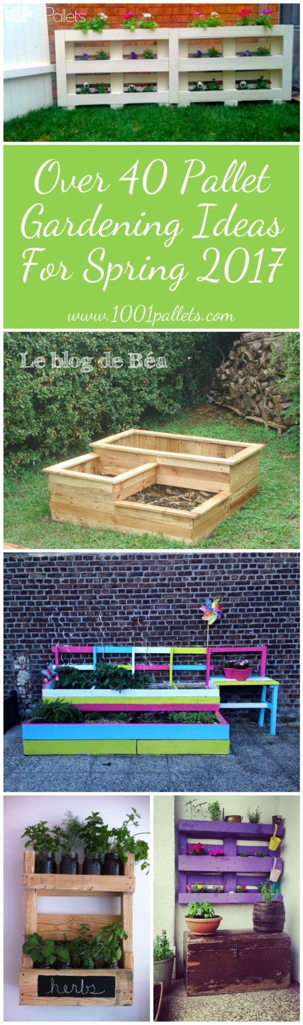Over 40 Pallet Gardening Ideas for Spring 2017