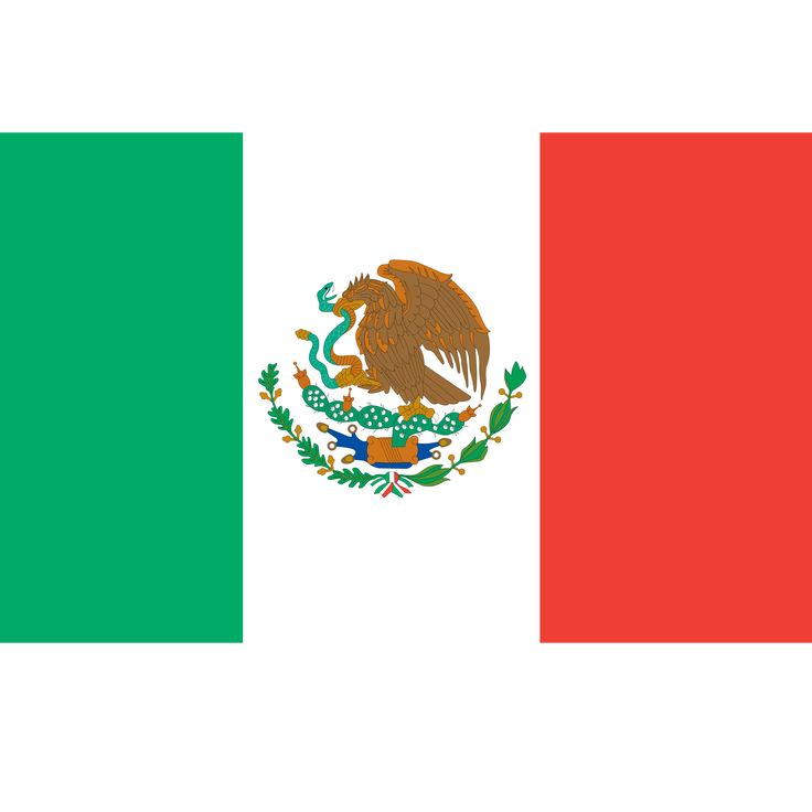 Government: In the picture above there is a mexican flag. The colors on the flag mean different things. The green is for hope. The white is for purity. The red for blood. The red is also for the people who died fighting for mexico. There is an eagle has a snake in it's mouth and in its right claw. The left claw represents a cactus in a lake. The flag has been used since 1986. The idea for the flag was in 1821.