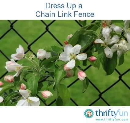 A chain link fence is durable and long lasting. It is a great choice for defining property boundaries and keeping your children and pets safe. Here are some ideas for adding some charm to your chain link fence that will help it blend more seamlessly into your landscape.