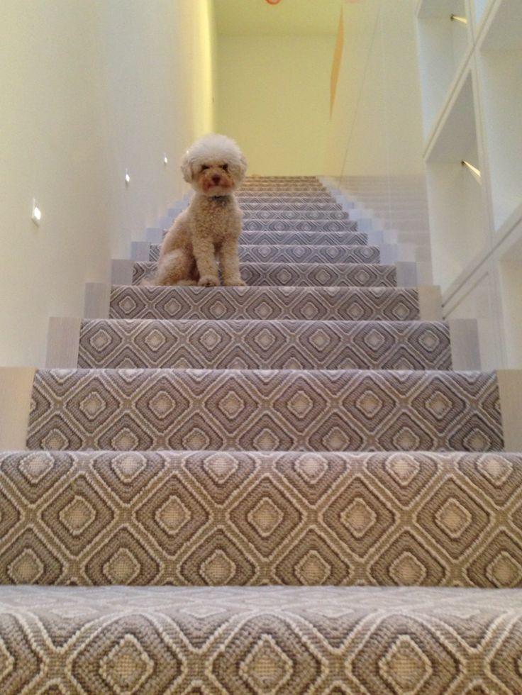 73 Best Images About Stanton Carpet On Pinterest