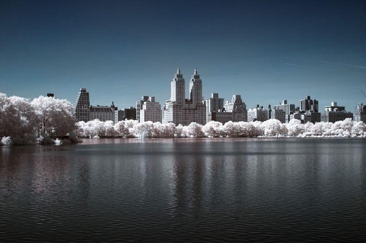 Reservoir Central Park Spring
