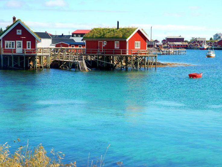 Les toits des cabanes sont recouverts d'herbe ou de tourbe dans les îles Lofoten, en Norvège