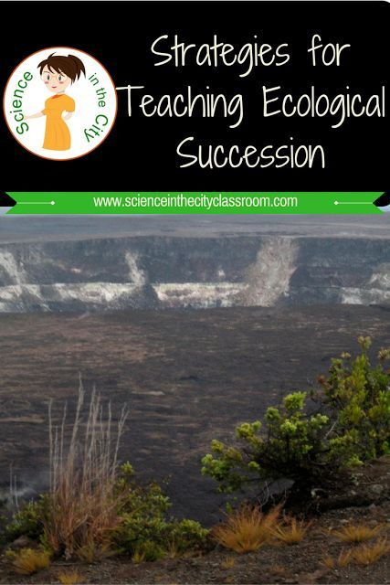 "Teaching Ecological Succession   Strategies for Teaching Ecological Succession  I was asked to write about how I teach ecological succession. Ecological succession is a simple topic but for some reason students have a difficult time sometimes with the finer points or remembering the vocabulary. Let's start at the beginning What is succession?   It is defined as ""the progressive replacement of one community by another until a climax community is established."" (dictionary.com). In terms of…"