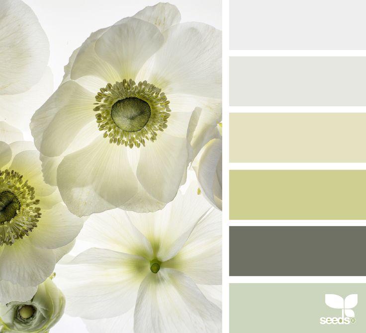 {flora tones} image via: @traceybolton