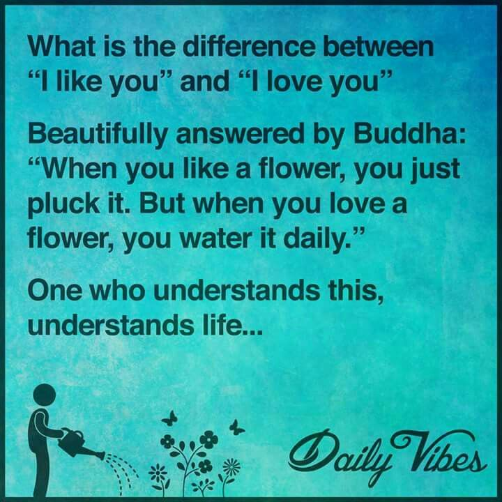 What Is The Difference Between Love And Relationship