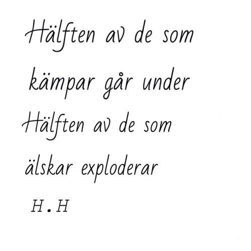 Håkan Hellström Fans