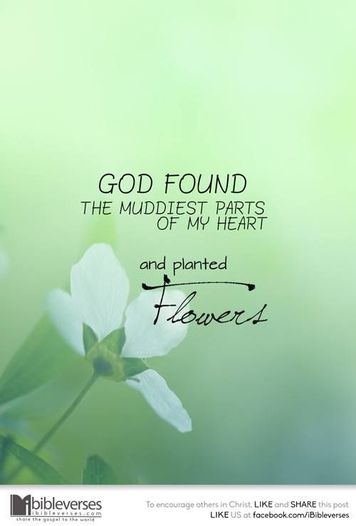 Pin by Living Water on Inspirational Quotes | Faith Quotes ...