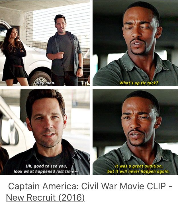 Ant Man and Falcon in Captain America: Civil War