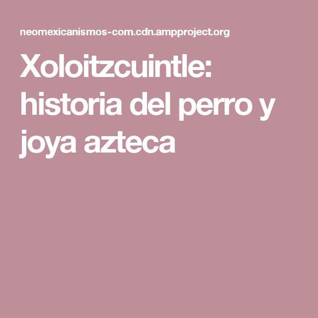Xoloitzcuintle: historia del perro y joya azteca