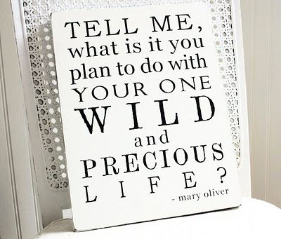 What is my plan? To teach my children compassion, integrity and how to appreciate life. To love my husband beyond my dying day. To live and make the most of my one, wild and precious life.: Inspiration, Plan, Wisdom, Mary Oliver, Favorite Quotes, Things, Inspire, Precious Life