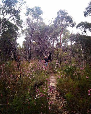 The Basin, Ku-ring-gai Chase National Park | 17 Beautiful Places To Go Camping Around Sydney
