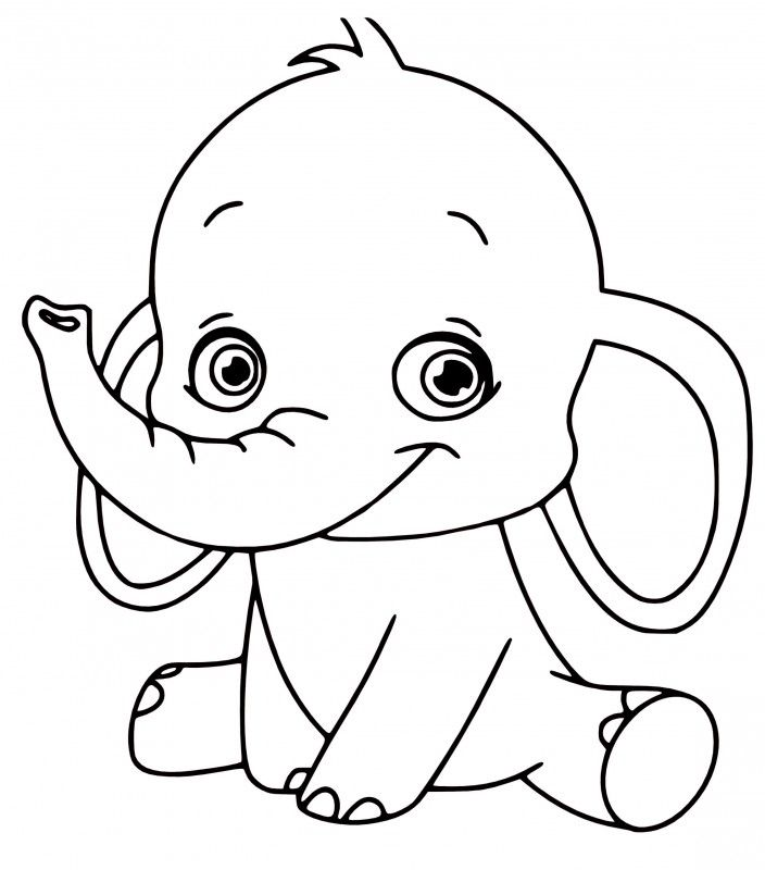 24 best baby animal printables images on print
