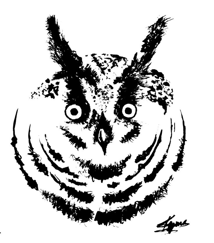 Porcupine quill and back ink owl illustration-first time testing the new toy out, and it's pretty fun to work with!