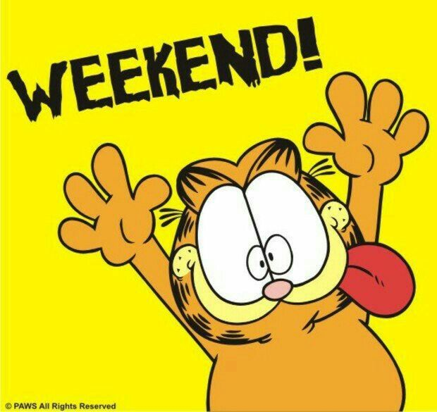 Have A Great Weekend Cat