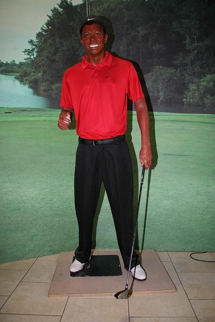 Tiger Woods 2013