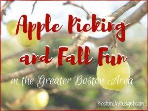 Apple & Pumpkin Picking and Farm Fun in the Greater Boston Area | Boston on Budget
