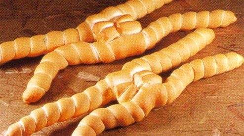 """Coppia Ferrarese is a type of regional bread from Ferrara. Today, the bread is shaped like an """"X"""", and is made from two long pieces of dough, knotted together and twisted at its four ends."""
