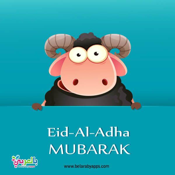 أجمل صور تهنئة عيد الأضحى المبارك 2020 رمزيات خروف العيد بالعربي نتعلم Eid Ul Adha Adha Mubarak Romantic Poetry