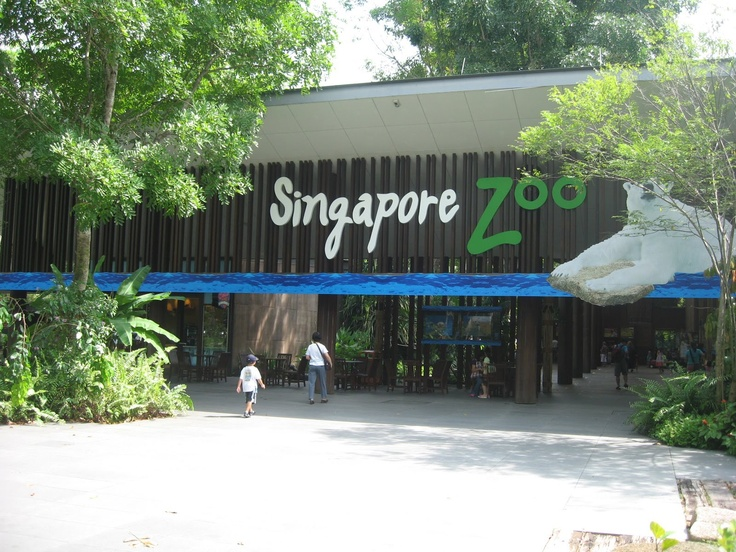 Singapore Zoo There are many attractions for tourists in Singapore.    http://www.carltonleisure.com/travel/flights/singapore/singapore/belfast/