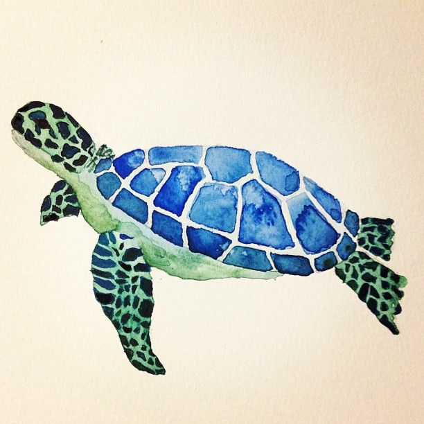 Sea turtle water color painting i made my personal pins for Turtle fish paint