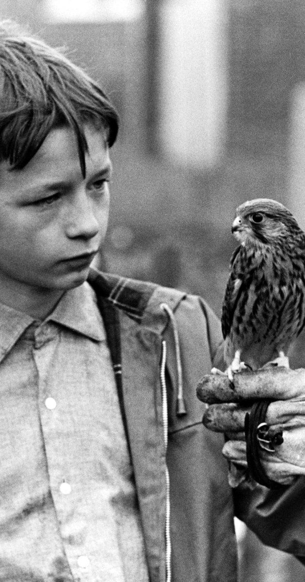 """Kes"" is a 1969 film by Ken Loach, starring Dai Bradley who portrays a boy, ignored and abused at home, who finds purpose and meaning in caring for and training his pet kestrel falcon."