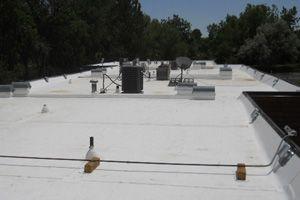 TPO single ply roof
