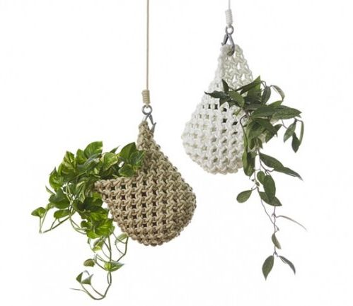 Smalltown - Knotted Plant Pod - Tait