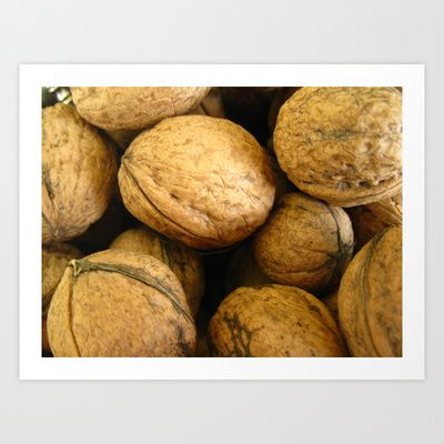 Wall Nuts Art Print by munziart - $15.00